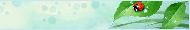 افزودن یک تم زیبای کفشدوزکی به فایرفاکس